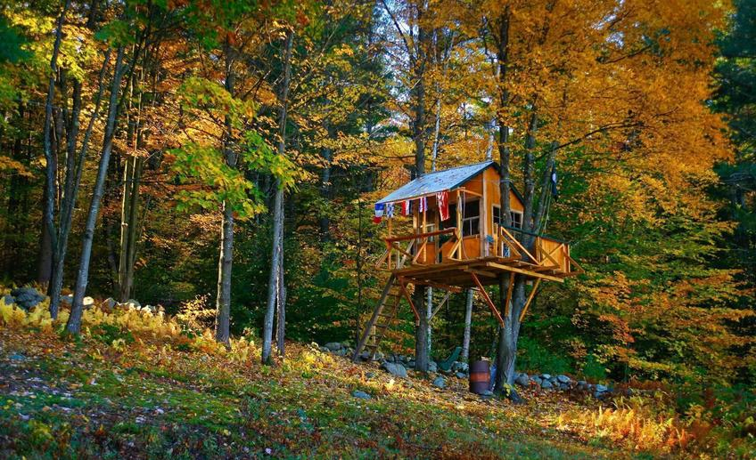 295 1tree house in fall
