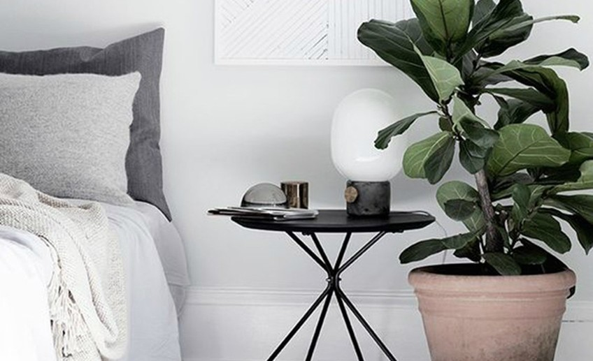 Omg sidetable bedroom plant 2048x2048