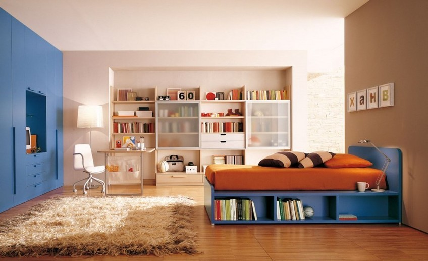 Usual marvelous boys room paint ideas look with fur rug next to single bed and big bookshelves 909x597