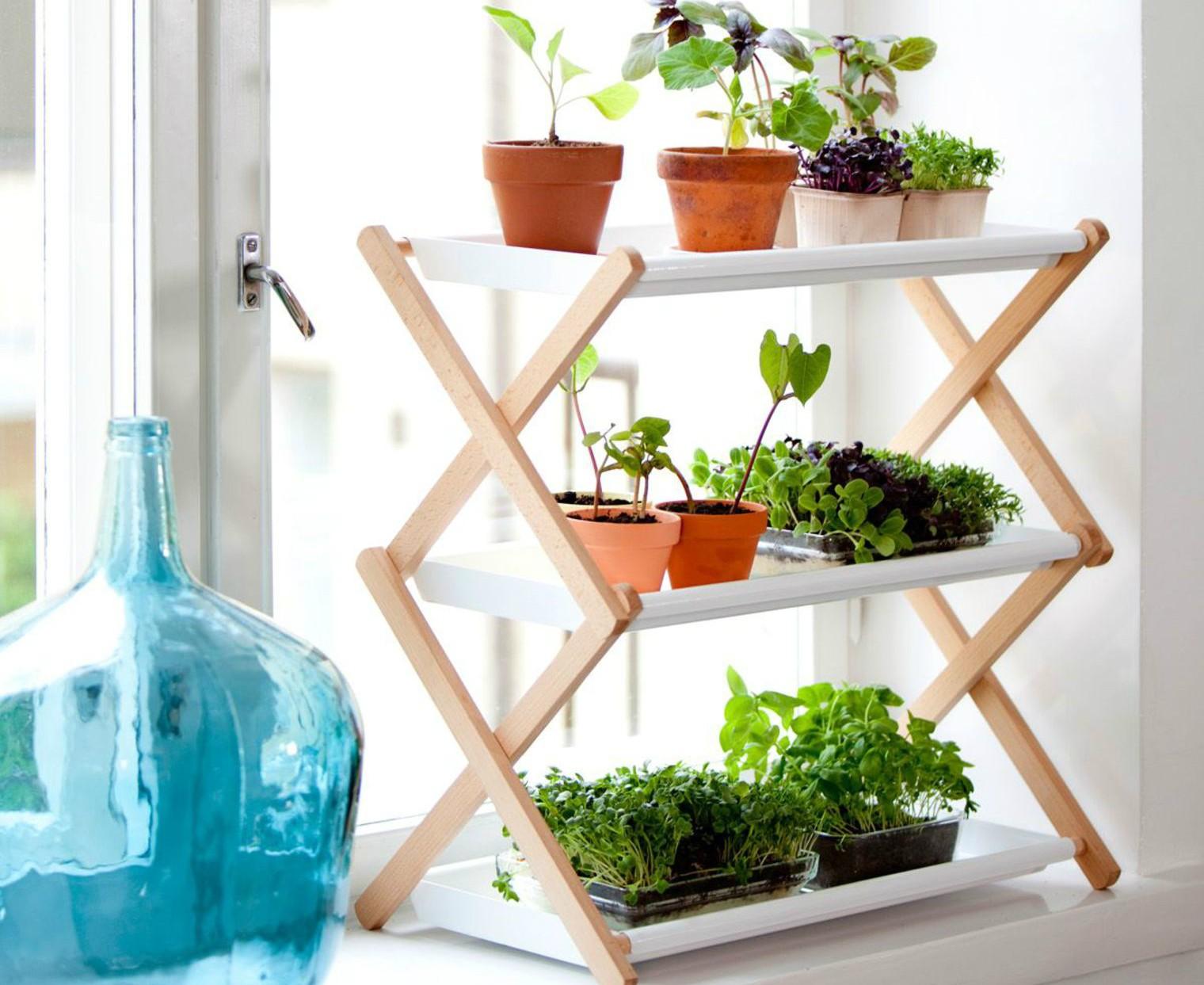 Подставки для цветов на подоконник Условия для выращивания цветов на окне 51