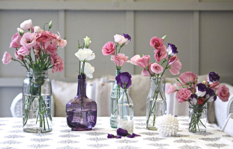 Цветы для интерьера фото