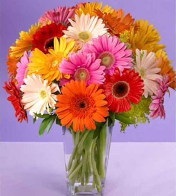 Цветы которые долго стоят в вазе