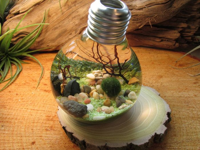 Аквариум из лампочек своими руками