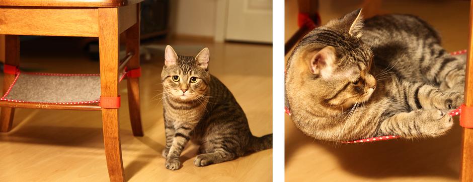 домик лежанка для кошки своими руками