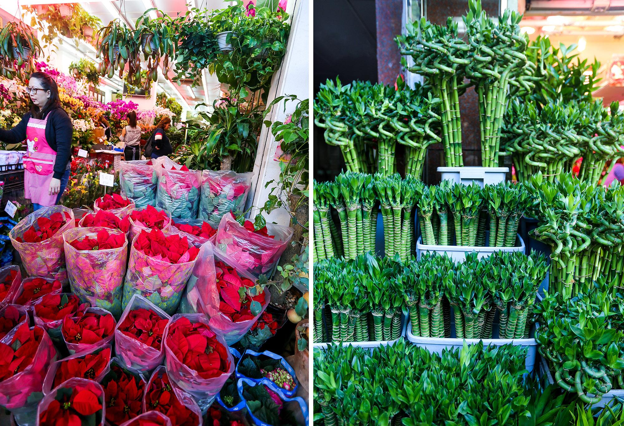 Букет, оптовая продажа цветов в оаэ