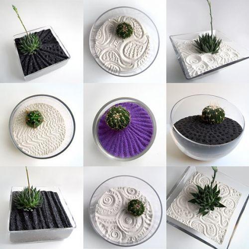 Флора в интерьере | кактусы как стильный элемент декора кактусы как стильный элемент декора Флора в интерьере | кактусы как стильный элемент декора post pinterest com70