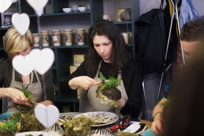 Как я побывала на ботанических посиделках, или Кокедама «Кашалот» своими руками – Эксперименты
